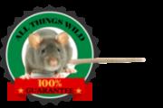 Greenville Wildlife Removal
